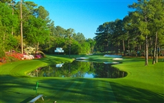 "AUGUSTA NATIONAL GOLF CLUB IMAGE OF THE 16TH HOLE ON ALUMINUM. SIZE 20"" X 30"". BRIAN MORGAN COLLECTION"